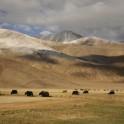 Kyrgizstan. Photo: F. Simm