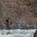 Kyrgizia, Maliy Naryn canyon. Photo: Konstantin Galat