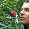 Khibiny. Kirovsk Polar Botanical Garden. Egor Druzhinin. Photo: Konstantin Galat