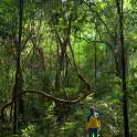 Uganda. Rain forest. Alexey Lukin. Photo: Konstantin Galat