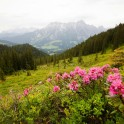 Austria. Salzburgerland. Photo: Konstantin Galat