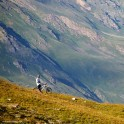 Russia. South Elbrus region. Mt.Cheget slopes. Rider - Petr Vinokurov. Photo: Ludmila Zvegintseva