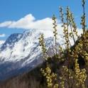 Russia, Caucasus. Baksan valley. Photo by Daria Pudenko