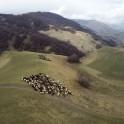 Russia, Caucasus. Bylim valley. Photo by Oleg Kolmovskiy