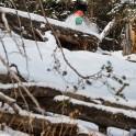 Кавказ. Курорт Архыз. Райдер - Константин Галат. Фото - Андрей Британишский