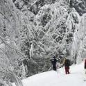 Абхазия. Район Ауатхара. Фото – Александр Ильин