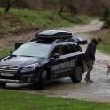 Абхазия. Subaru Outback – официальный автомобиль проекта RideThePlanet. Видеооператор проекта – Борис Белоусов. Фото – Сергей Пузанков