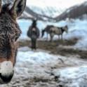 Италия. Регион Ливиньо. Фото – Владимир Горлов