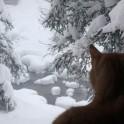 Бурятия. Ущелье Мамай. Фото – Григорий Корнеев