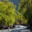 Горный Алтай. Река Куркуре. Фото - Константин Галат